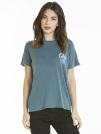 Obey Paint And Destroy T-Shirt (dusty balsam blue)