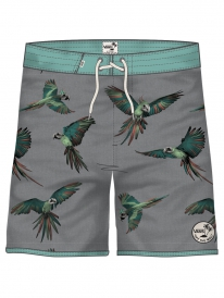 Vans Planetary Badehose (dirty bird)