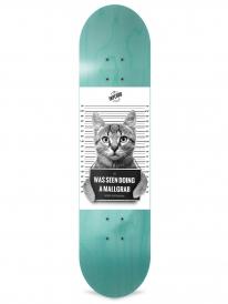 Inpeddo Mallgrab Cat Deck 8.0 Inch (turquoise)
