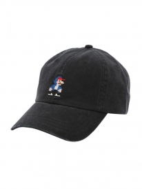 Iriedaily 8 Bit Dude Dad Cap (black)