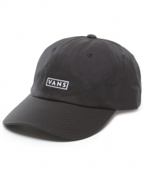 Vans Curved Bill Cap (black/white)