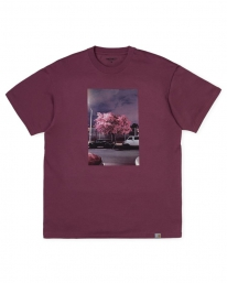Carhartt WIP Matt Martin Blossom T-Shirt (dusty fuchsia)