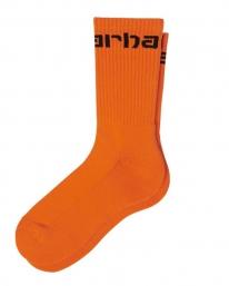 Carhartt WIP Carhartt Socken (hokkaido/black)