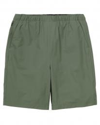 Carhartt WIP Hurst Short (dollar green)